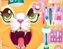 Kedi Dişçide Oyunu bu oyunumuzda hem eğlenmek hemde kedimizin diş tedavisini yaparak pu...