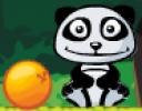 Sevimli pandanın en sevdiği yiyecek portakallar ama portakallarla arasındaki ...