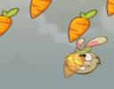 Tavşanlar havucu çok severler ve havuç oldukları zaman karınları tok olsada h...